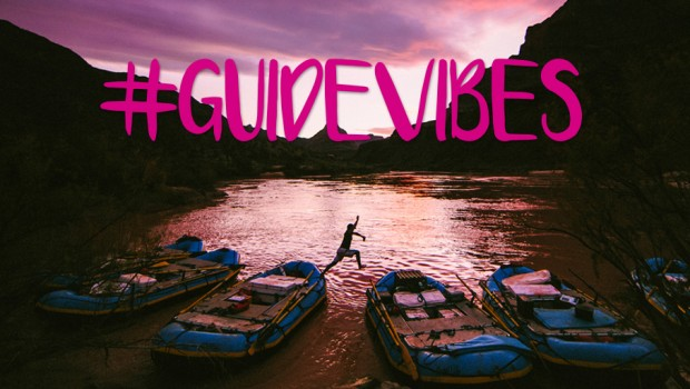 GuideVibes_Twitter_3